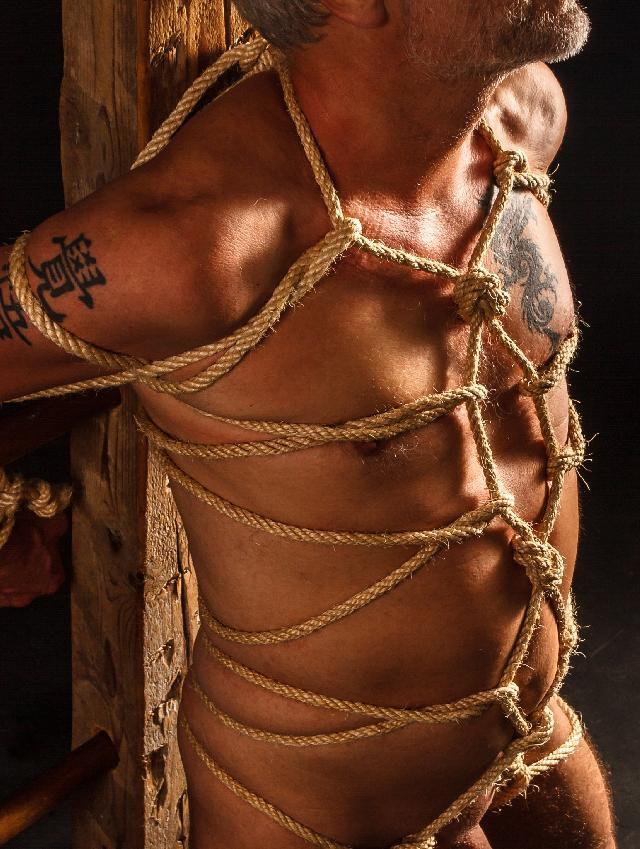 Shibari chest harness
